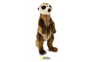 National Geographic Plush - Meerkat