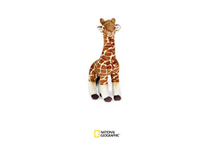 National Geographic Plush - Giraffe