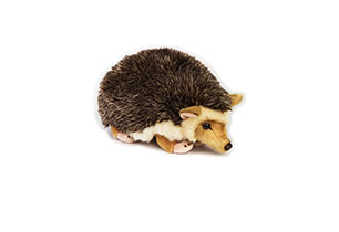 National Geographic Plush - Desert Hedgehog