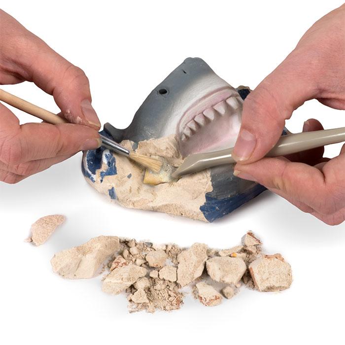 National Geographic - Shark Teeth Dig Kit | National