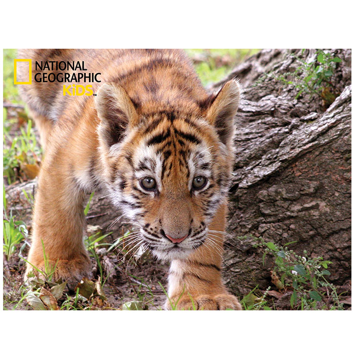 National Geographic 48pc Tiger 3d Puzzle National Geographic