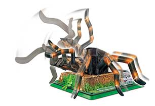Innonex 4D Science Tarantula