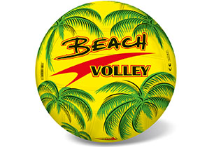 21cm Beach Volley Ball